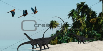 Diplodocus 02