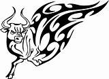 tribal_bulls2_029