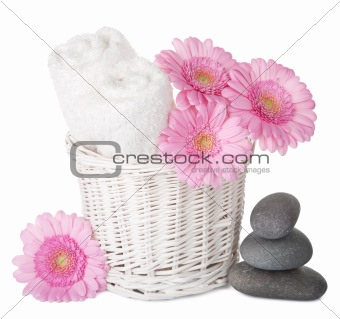 bath and spa set isolated