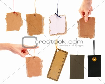 set of blank cardboard tags hanging on white background