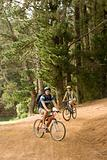 Couple cycling in forest