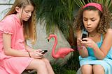 Girls using cellphones