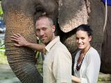Couple stroking an elephant