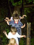 Children on a rope bridge