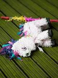 Pinata lying on decking
