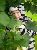 Boy in a zebra costume hiding in leaves