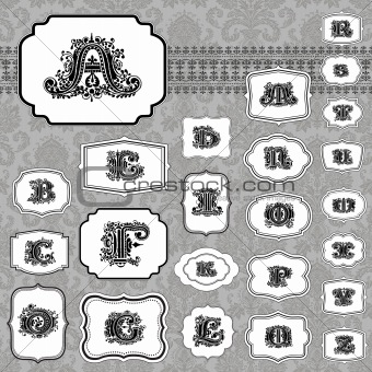 Vector Frame and Ornate Letter Set