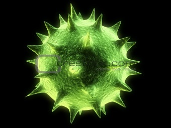 isolated virus