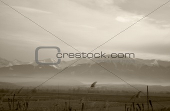 Misty Carpathians