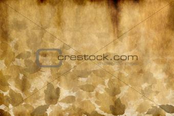 old worn leafy parchment