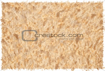 Abstract bread texture