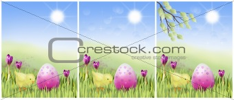 Easter chicken with pink egg on a sunny meadow