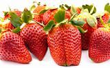 strawberries group