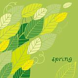Spring leaf card