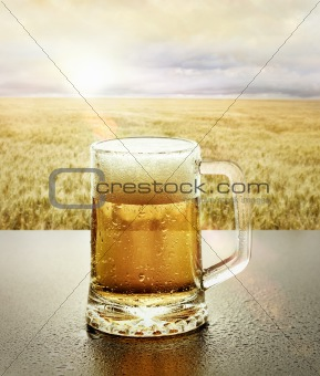 Glass of Cold beer in nature