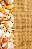 seashell frame on sack