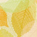 Light autumn leaves pattern. EPS 8 vector file included