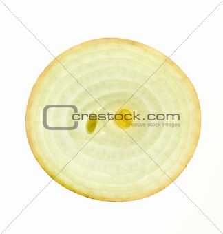 Slice of a fresh Onion /  back lit / isolated on white