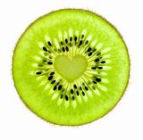 Heart of a Kiwi / Super Macro /  back lit