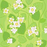 seamless pattern of white lotus on the background of green swamp