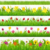 Flower Borders Set