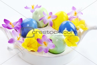 Beautiful Crocuses for Easter