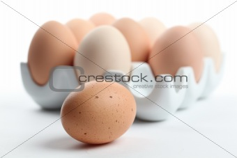 Ceramic egg holder with one brown chicken eggs
