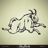 Buffalo. Vector