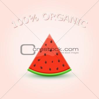 100% Organic Watermelon Slice on Light Background. Vector