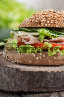 Delicious sandwich