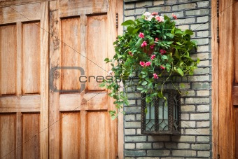 House decoration - Hanging houseplant basket and old style lamp