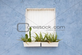 Window shutter and window box