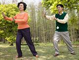 A couple practising tai chi