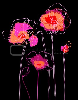 Pink poppies on black background.