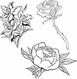 flower_set
