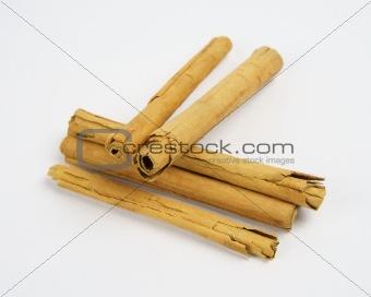 Cinnamon sticks or quills on white background