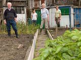 Gardeners stood in their allotment