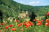 San antimo abbey tuscany