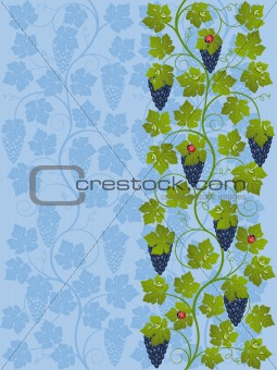 Floral background with a vine. Vector illustration.
