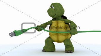 tortoise with a RJ45 cable