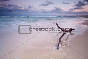 australian seascape at twilight