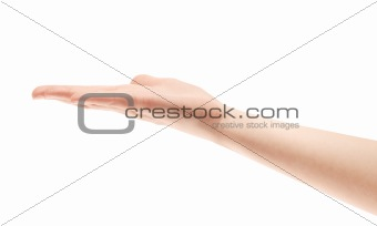 Showing Hand Isolated
