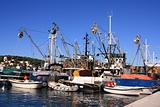 Fishing boats in the harbor of Male Losinj