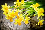 Spring narcissus in a rustic wicker basket
