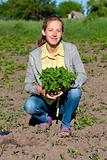 Happy Woman with Tomato Seedlings in the Garden