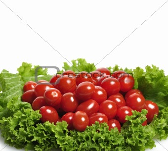 Tomatoes And Salad Leaves