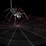 metal spider and web