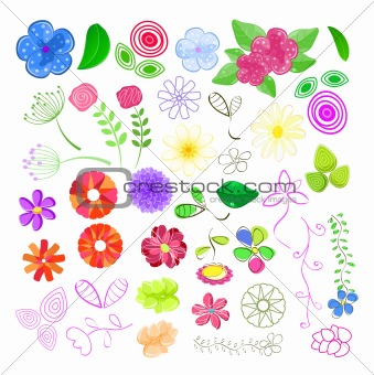Set of Flower Elements. Floral Vector Illustration