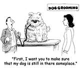 Dog grooming