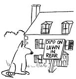 Dog lawn